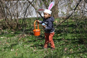 Christopher collecting eggs during Easter Egg Hunt 2016. Photo by Cassie Sherman Marks