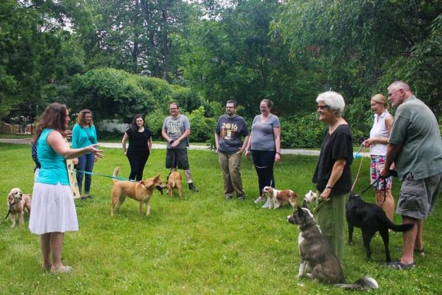 Animal Blessing_July 2016- Carlye Brooks